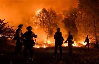 الحكومة الأوكرانية تعلن إخماد حرائق الغابات حول مفاعل تشيرنوبل