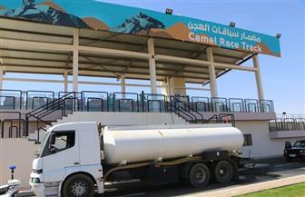 البدء في تنفيذ مضمار سباقات الخيل واستغلال المزرعة الخشبية بشرم الشيخ | صور