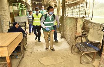 «أبو العينين» ينظم عملية شاملة لتطهير وتعقيم جزيرة القرصاية في الجيزة | صور