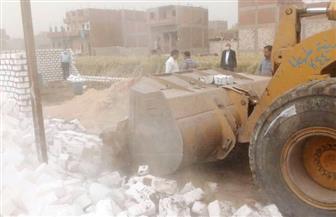 إزالة 14 حالة تعد على الأراضي الزراعية وأملاك الدولة بسوهاج | صور