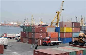 ميناء الإسكندرية يستقبل 101 ألف طن بضائع استراتيجية