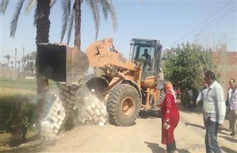 إزالة مخالفات بناء وتعديات على أراض زراعية بحي شرق أسيوط ومركز الفتح | صور