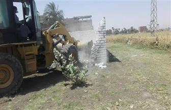 استمرار حملات الإزالة على الأراضي الزراعية في إسنا | صور
