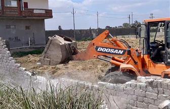 محافظ كفر الشيخ يقود حملة إزالة التعديات على الأراضي الزراعية وأملاك الدولة | صور