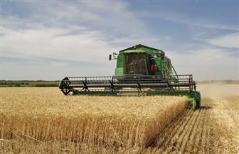 ألمانيا: وصول عمال من رومانيا للعمل في جني المحاصيل
