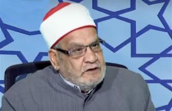 أحمد كريمة: الإخوان والسلفيون عبء على الدين