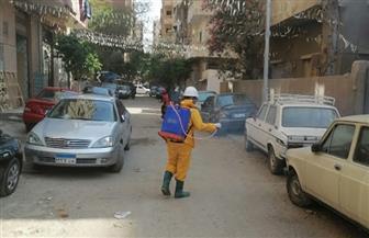مياه الجيزة تسهم في حملة مكثفة لتطهير وتعقيم شوارع المحافظة  صور