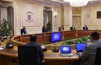 رئيس الوزراء يتابع أعمال لجنة حصر تصرفات الأراضي وحل مشكلات المستثمرين بالساحل الشمالي الغربي