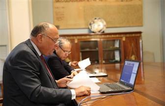 وزير الخارجية يشارك في اجتماع خماسي حول آخر تطورات منطقة شرق المتوسط | صور
