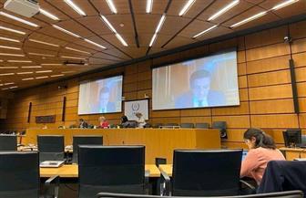 سفير مصر بالنمسا يشارك في مناقشة ميزانية الوكالة الدولية للطاقة الذرية وبرنامجها الجديد | صور