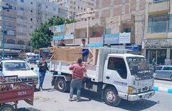 حملات لإزالة إشغالات الطريق للباعة الجائلين والماشية المنتشرة بمطروح| صور