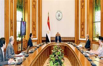 الرئيس السيسي يوجه بزيادة دعم المشروع القومي للبتلو وتحقيق الاكتفاء الذاتى من المحاصيل