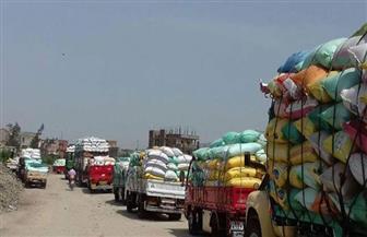 توريد 92 ألفا و960 طن قمح إلى شون وصوامع محافظة الغربية