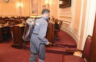 مجلس النواب يتخذ إجراءات وقائية إضافية بعد إصابة النائبة شيرين فراج بفيروس كورونا | صور