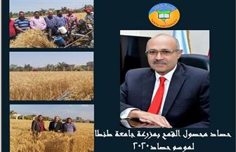 جامعة طنطا: نجاح حصاد محصول القمح بمزرعة كلية الزراعة لموسم2020| صور
