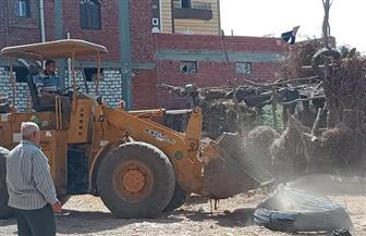 شن حملات لإزالة التعديات ومخالفات البناء بمراكز ومدن محافظة كفرالشيخ | صور