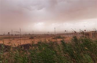 عواصف ورياح ترابية وأمطار خفيفة على الوادي الجديد