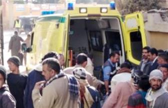 بدء التحقيق في واقعة تسمم 14 شخصا بجزيرة شندويل في سوهاج