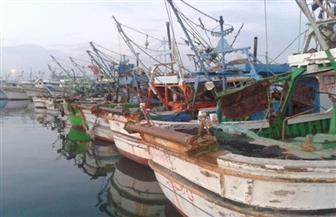 البحر الأحمر تقرر صرف منحة شهرية لأسر الصيادين المتضررين من وقف الصيد