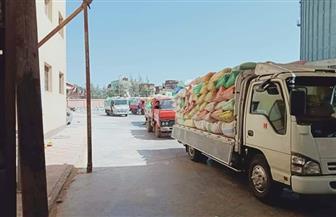 توريد 275 ألف طن قمح لشون وصوامع محافظة البحيرة