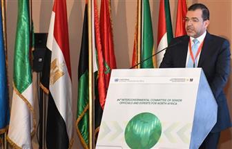 مدير مكتب شمال إفريقيا للجنة الأمم المتحدة: مصر سباقة في الدفع بحزم مالية وحلول صحية لمواجهة كورونا| حوار