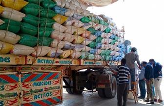 ارتفاع الكميات الموردة من القمح بمحافظة كفرالشيخ إلى 62 ألف طن   صور