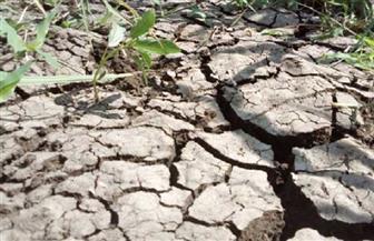 الأمم المتحدة تطلق مبادرة مناخية جديدة في اليوم العالمي للبيئة