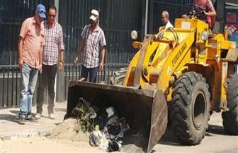 رفع القمامة وتطهير الشوارع بحي الزهور في بورسعيد | صور