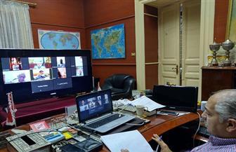 أمانة الهيئات الاستشارية بمستقبل وطن تناقش مستجدات كورونا عبر الفيديو كونفرانس| صور