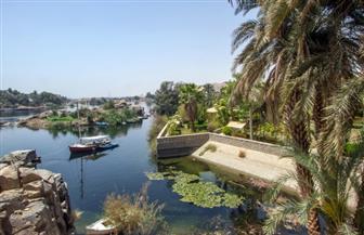 """ جت نارتي"" متحف نباتات مصر والعالم   صور"