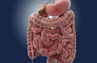 5 خطوات سهلة لتحسين صحة الأمعاء