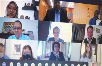 سفير مصر بالنمسا وغادة والي يشاركان في احتفال يوم إفريقيا مع المجموعة الإفريقية بفيينا