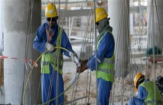 القوى العاملة: توفير 263 فرصة عمل بالقليوبية