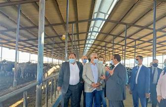 وزير الزراعة ومحافظ البحيرة يتفقدان محطة الإنتاج الحيواني وتصنيع الألبان بغرب النوبارية | صور
