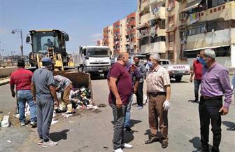 حملة نظافة بأحياء الزهور والضواحي في بورسعيد | صور