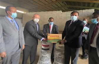 مصر تسلم شحنة مساعدات غذائية إلى كينيا