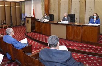 """مشادة في """"نقل النواب"""" أثناء مناقشة قانون رسوم تنمية موارد الدولة"""
