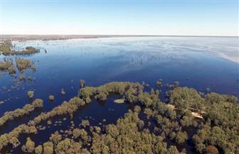 الري: بحيرة فيكتوريا تتعرض لأقصى معدل أمطار مسجل منذ الستينيات| صور