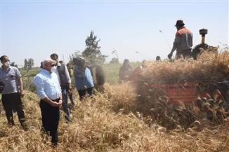 محافظ بورسعيد: توريد ٢٣٠١ طن قمح للصوامع منذ بدء الحصاد| صور