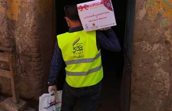 توزيع 6 آلاف كرتونة مواد غذائية للأسر الأولى بالرعاية في كفرالشيخ| صور