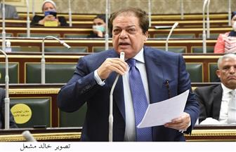 أبوالعينين: الرئيس السيسى أول من وضع رؤية مستقبلية لمصر