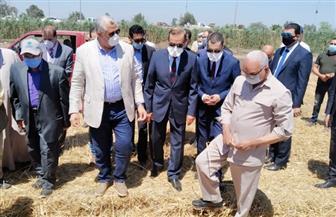 وزير الزراعة يشهد حصاد القمح بمزرعة القرضا بكفر الشيخ ويتفقد مزرعة معهد بحوث الإنتاج الحيواني