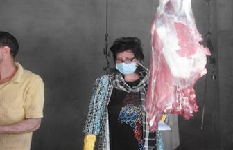 تحرير 41 مخالفة تموينية في حملة على الأسواق بالأقصر | صور