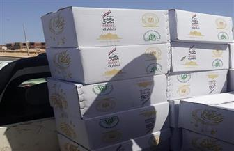 توزيع 21 ألف كرتونة مواد غذائية على عاملين في قطاع السياحة بالمحافظات المختلفة | صور