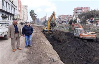 تكثيف أعمال التطوير والتجميل بشوارع وميادين الشرقية | صور