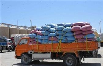 توريد 28 ألف طن قمح بصوامع وشون محافظة أسوان