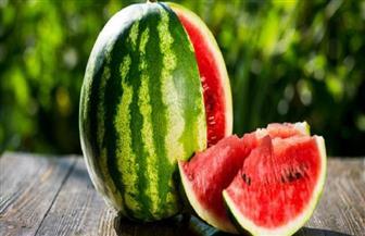 """نقيب الفلاحين: البطيخ """"فاكهة الغلابة"""" وارتفاع أسعاره يرجع لزيادة الإقبال عليه"""