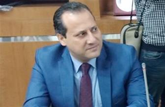 «الهجرة» تستعرض نجاحات مصر بملف مساهمة المغتربين بالتنمية في اجتماع إقليمي للحكومات