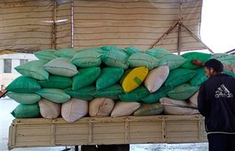 ارتفاع توريد محصول القمح  لصوامع وشون سوهاج إلى أكثر من نصف المستهدف