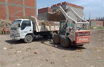 حملات مكثفة لنظافة قرى ومدن محافظة كفرالشيخ.. وإصلاح شبكات الكهرباء | صور